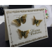 Sticker, Double Embossed Butterflies