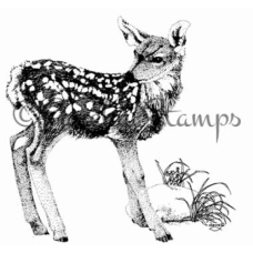Fawn Stamp