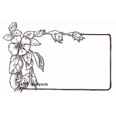 Apple Blossom Label Stamp