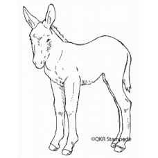 Foal Stamp