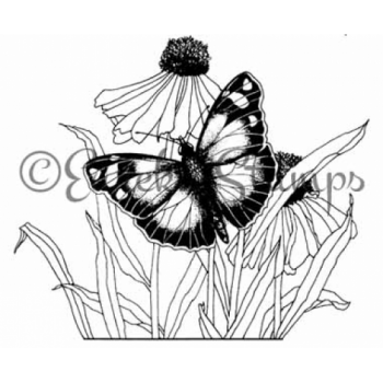 Butterfly & Daisy Flower Stamp ES-20801L