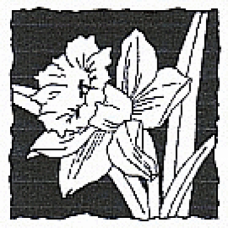 Shadow Daffodil Stamp