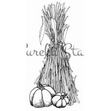 Cornstalk and Pumpkin Stamp
