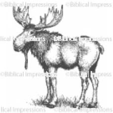 Moose Unmounted Stamp