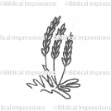 Wheat Unmounted Stamp