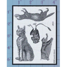 Rodents Unmounted Stamp