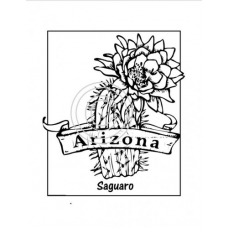 Arizona, Art Acetate State Print