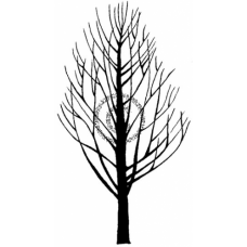 Bare Tree Cling Stamp