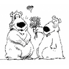 Bears With Flowers Art Acetate