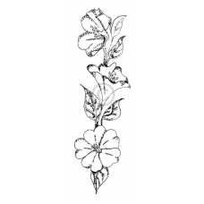 Beautiful Blooms Cling Stamp