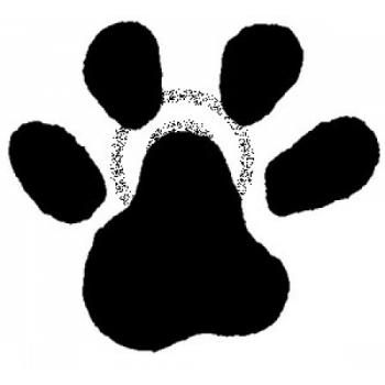 Cat Paw Cling Stamp