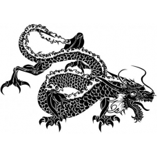 Chinese Dragon Art Acetate