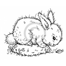 Curious Bunny Cling Stamp