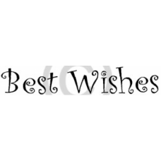 Curly Best Wishes Cling Stamp