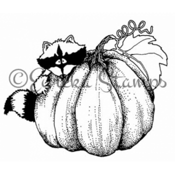 Pumpkin Racoon Digital Stamp