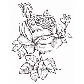 Rose Digital Stamp