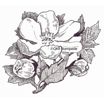 Flower Blossom Digital Stamp