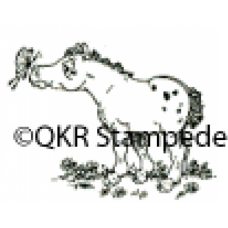 Foal and Butterfly Digital Stamp