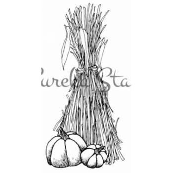 Cornstalk and Pumpkin Digital Stamp