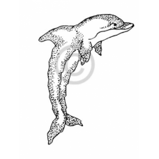 Dolphin Cling Stamp