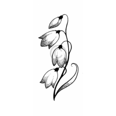 Elegant Orchid Cling Stamp