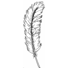 Feather(large)  Cling Stamp 124