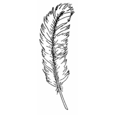 Feather(small)  Cling Stamp 192