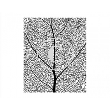 Leaf Veins, Art Acetate
