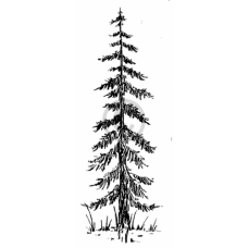 Old Pine Cling Stamp