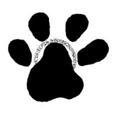Paw Print Cling Stamp AS76C