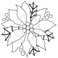 Poinsettia Single Flower Art Acetate