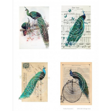 Pretty Peacocks 1, Vintage Hue Acetate