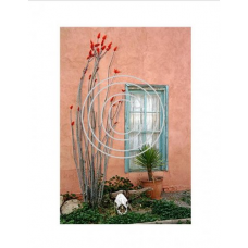 SantaFe Window, Vintage Hue Acetate