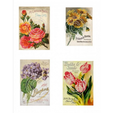 Seed Packets 1, Vintage Hues