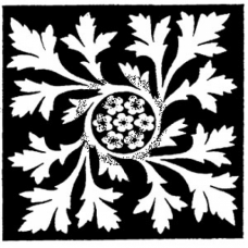 Sqaure with Leaves Cling Stamp