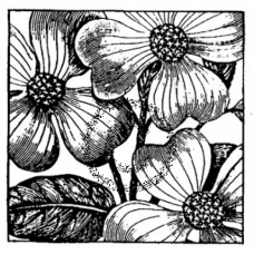 Square with Flowers Cling Stamp