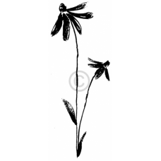 Tall Daisy Cling Stamp