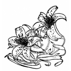 Tiger Lily Cling Stamp