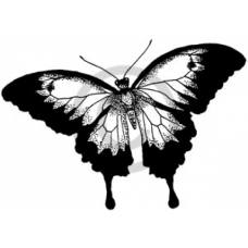Ulysses Butterfly Cling Stamp