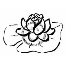 Water Lily Cling Stamp
