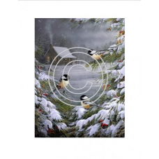 Winter Chickadees 4 same, Vintage Art Acetate