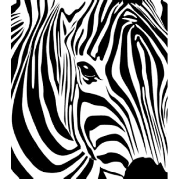 Zebra Art Acetate