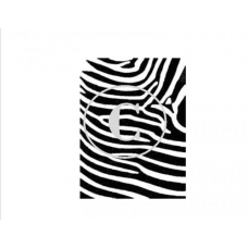 Zebra, Art Acetate Background