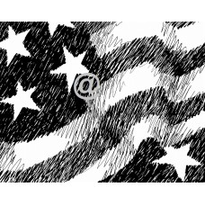 Flag Background Art Acetate Black Print