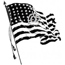 U.S. Flag Art Acetate Black Print