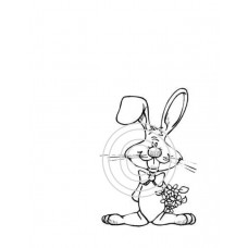 Silly Rabbit Art Acetate