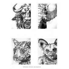 Wild Animals 2 Art Acetate